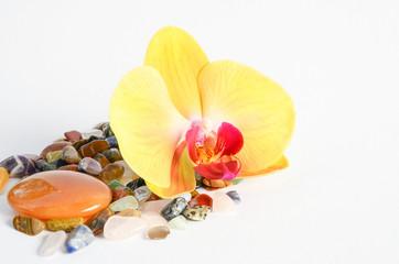 Handstein orange mit Edelsteinen und Orchidee