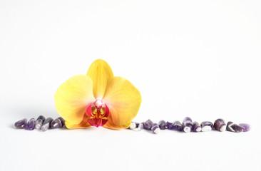 Amethyst mit Orchideenblüte Edelsteine Heilsteine