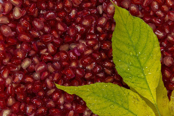 Azerbaijan pomegranate grains