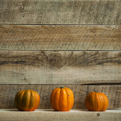 Three Pumpkins on Old  Wooden Background