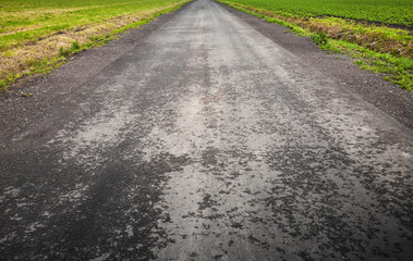 Empty asphalt country road perspective with horizon line