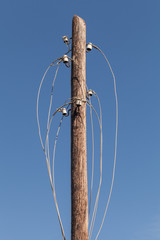 Disconnected electric wires on old wooden pylon