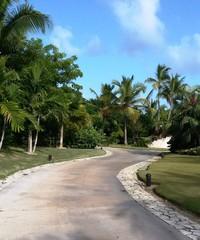 caminos en el parque