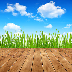 Dewy green grass with wooden planks under blue sky