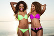 Beautiful young african american women.