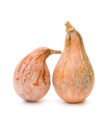 two ripe pumpkins stand up on a white background