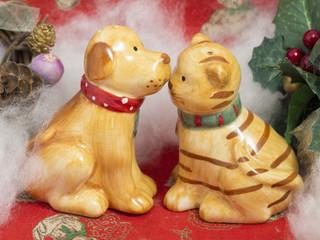 クリスマスでの犬と猫のカップル