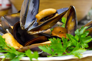 tasty mussels isolated