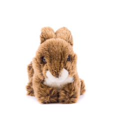 Easter plush rabbit.