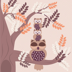 Owls family - vector background