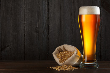 Beer glass with bag full of beer barley for brewing