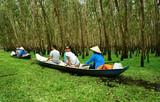 Tra Su indigo forest, Vietnam ecotourism poster