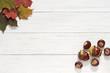 canvas print picture - Herbstblätter und Kastanien