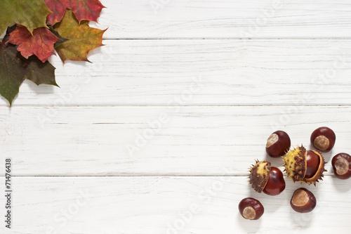 canvas print picture Herbstblätter und Kastanien