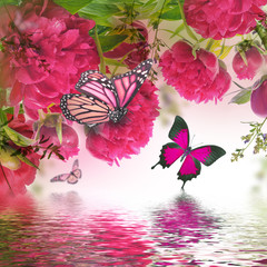 Bouquet of pink peonies and butterfly, floral background