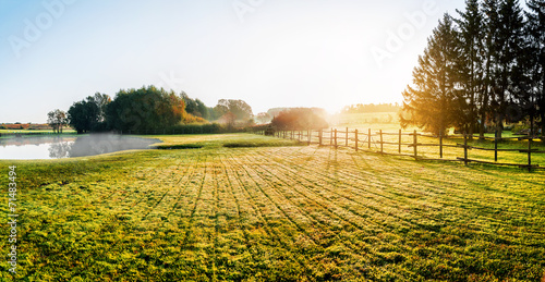Foto Spatwand Bomen Sunrise over misty grassland