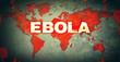 canvas print picture - Ebola
