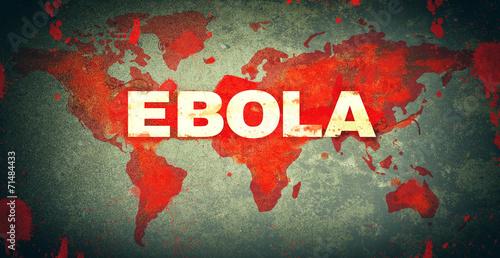 canvas print picture Ebola
