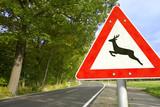 Fototapety Straße mit Verkehrsschild Achtung Wildwechsel