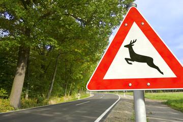 Straße mit Verkehrsschild Achtung Wildwechsel