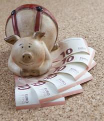 billets de 10 euros et cochon