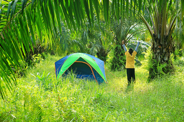 Tourist tent with boy in palm plantation