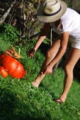 jardinage - récolte de courge