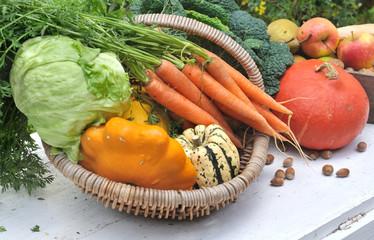 panier de légumes divers