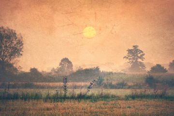 Countryside at dawn - Vintage image