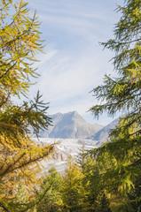 Riederalp, Dorf, Riederfurka, Aletschwald, Alpen, Schweiz