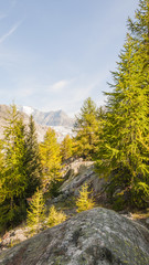 Riederalp, Riederfurka, Bergdorf, Alpen, Gletscher, Schweiz