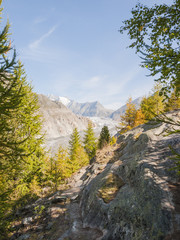 Riederalp, Dorf, Aletschwald, Riederfurka, Gletscher, Schweiz