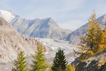 Riederalp, Dorf, Silbersand, Gletscher, Aletschwald, Schweiz