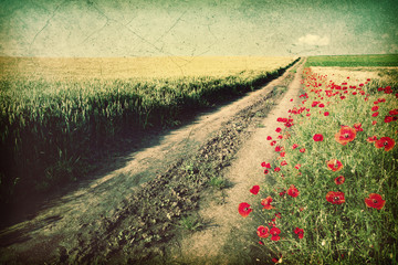 Dirt country road - Vintage image