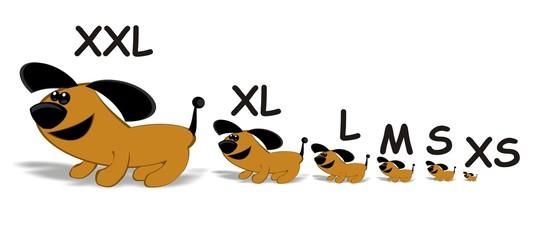 size chart dogs - xxl, xl, l, m, s, xs