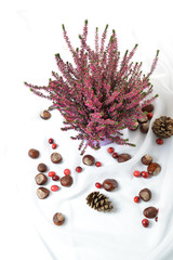 Autumn nature concept. The leaves, heather flower and chestnuts