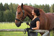Obrazy na płótnie, fototapety, zdjęcia, fotoobrazy drukowane : Portrait of brunette woman and brown horse