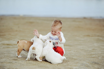 The little boy plays with puppies