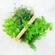 Fresh mint and lavender in a basket