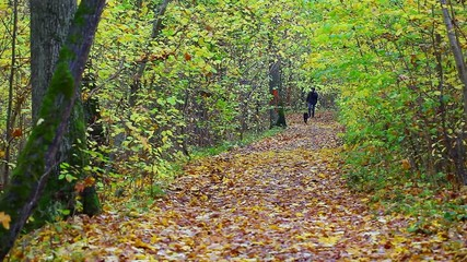 Hiker with dog in the park in autumn