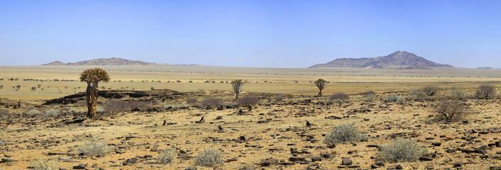 Landschaft nahe dem  KuisebPass
