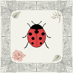 ladybug and rose drawing