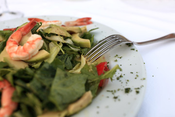 Plate with seafood and vegetables salad