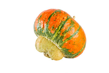 Decorative pumpkin on white background