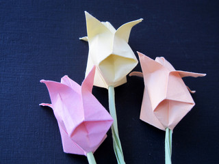 Origami tulip flowers on a black background