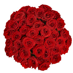 bouquet of beautiful red roses on a white background with clipp