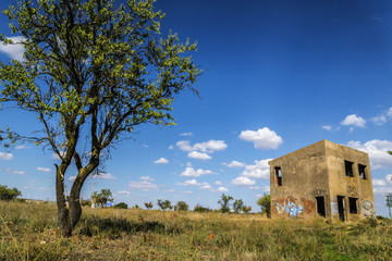 Ruina campo