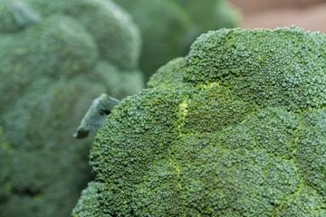 Broccoli macro shot