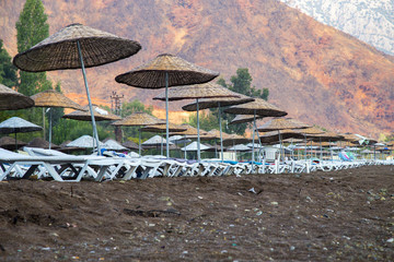 Sunbeds with Umbrellas on the Beach in a beautiful nature