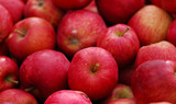 Red delicious apple poster